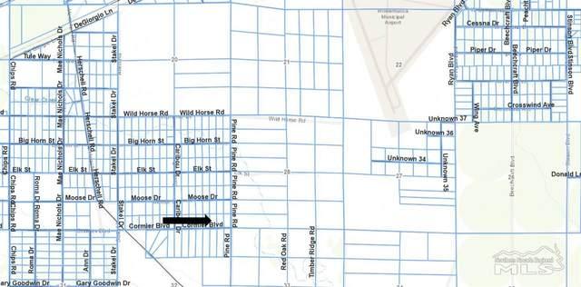 7205 Cormier Blvd, Winnemucca, NV 89445 (MLS #210005215) :: Morales Hall Group