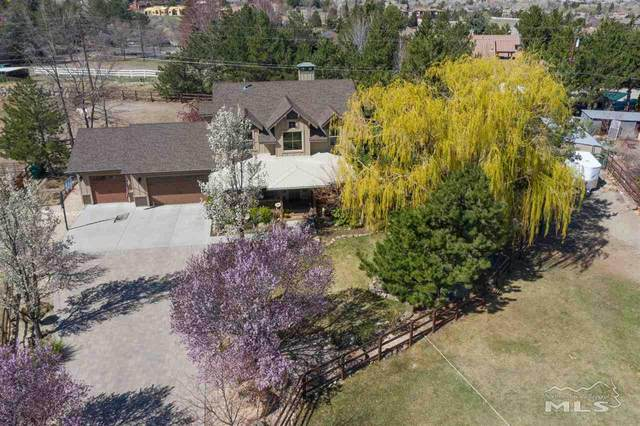 15065 Broili Drive, Reno, NV 89511 (MLS #210005329) :: Theresa Nelson Real Estate