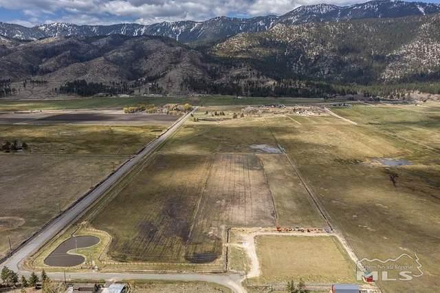 255 Nikki Lane, Washoe Valley, NV 89704 (MLS #210005395) :: Vaulet Group Real Estate