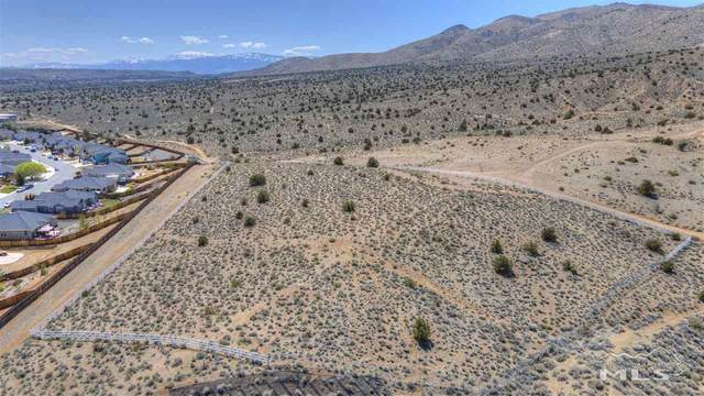 1247 Fuggles Drive, Sparks, NV 89441 (MLS #210005465) :: Chase International Real Estate