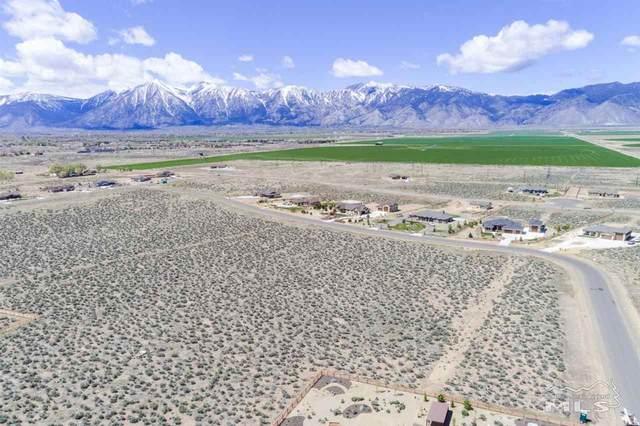 1873 Painted Desert, Minden, NV 89423 (MLS #210005583) :: Vaulet Group Real Estate