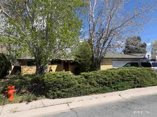 2513 Lewis Dr, Carson City, NV 89701 (MLS #210005771) :: The Mike Wood Team