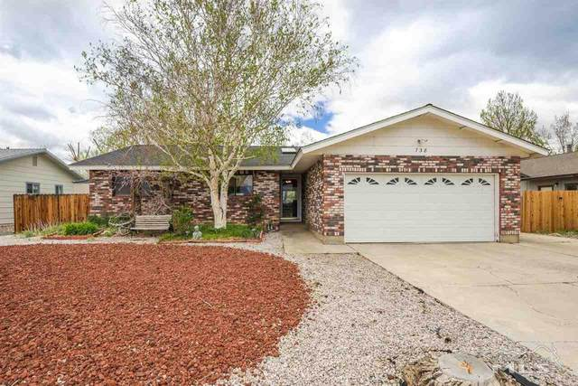 738 Long Valley Rd, Gardnerville, NV 89460 (MLS #210005797) :: Chase International Real Estate