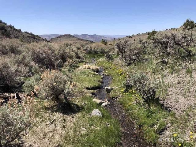 705 Pah Rah Springs Rd., Reno, NV 89510 (MLS #210006024) :: Vaulet Group Real Estate