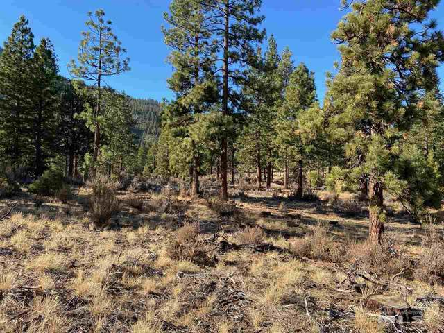 34 Boulders Bend Drive, Carson City, NV 89705 (MLS #210006059) :: Chase International Real Estate