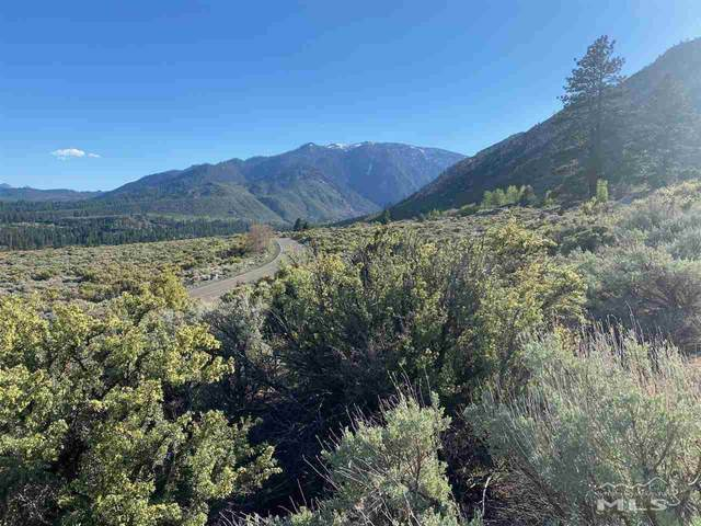 470 Emigrant Trail, Woodfords, Ca, CA 96120 (MLS #210006079) :: Theresa Nelson Real Estate