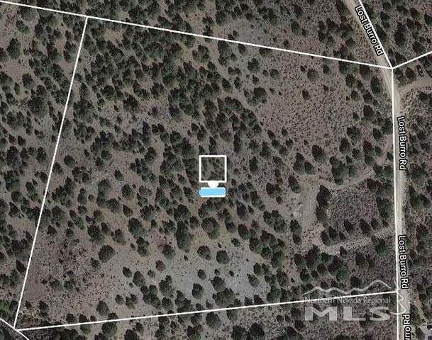 4740 Lost Burro Rd, Reno, NV 89521 (MLS #210006084) :: NVGemme Real Estate