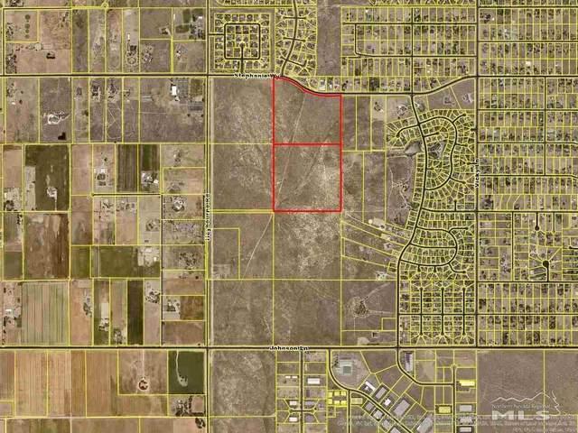 01B Stephanie Way, Minden, NV 89423 (MLS #210006139) :: Vaulet Group Real Estate