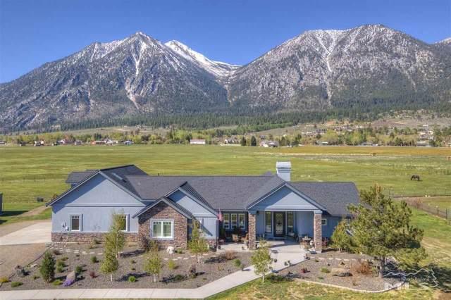 481 Centerville, Gardnerville, NV 89460 (MLS #210006418) :: NVGemme Real Estate