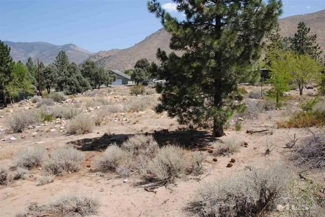 0 Western Drive, Walker, Ca, CA 96107 (MLS #210006543) :: Vaulet Group Real Estate