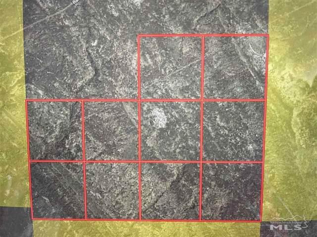 1563007 Old Emigrant, Lovelock, NV 89419 (MLS #210006626) :: NVGemme Real Estate
