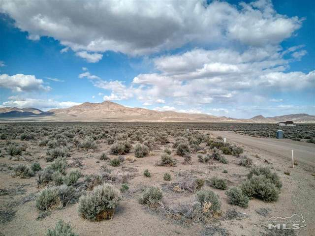 250 Finch Place, Smith, NV 89430 (MLS #210006671) :: Vaulet Group Real Estate
