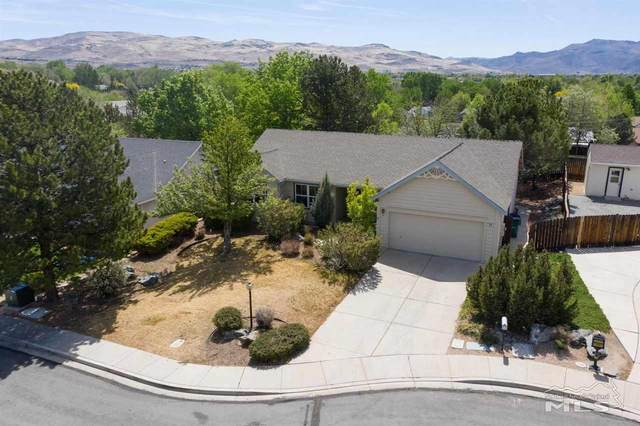 970 Teresa Place, Sparks, NV 89436 (MLS #210006739) :: Vaulet Group Real Estate