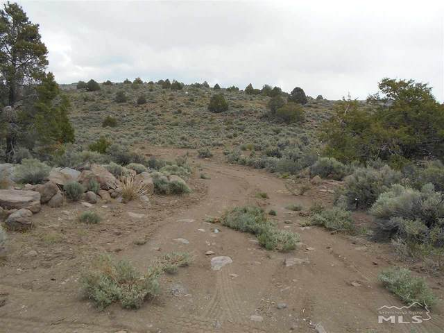 2820 Bullfrog Rd, Reno, NV 89521 (MLS #210007059) :: Craig Team Realty
