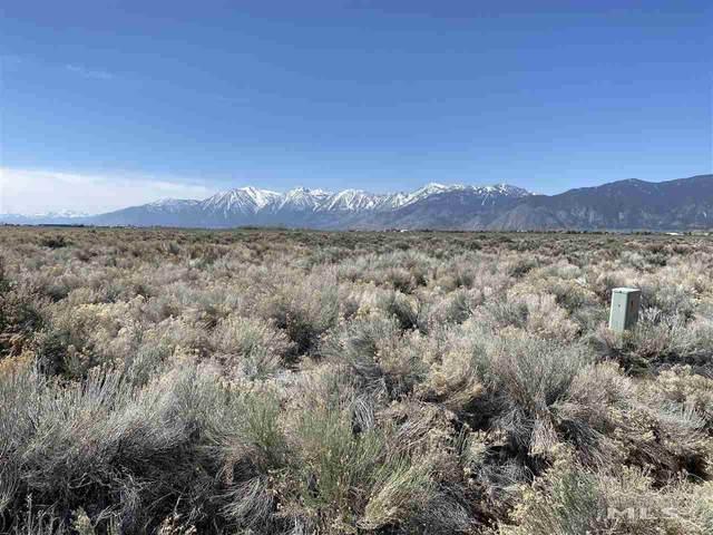 1205 Stephanie Way, Minden, NV 89423 (MLS #210007388) :: NVGemme Real Estate