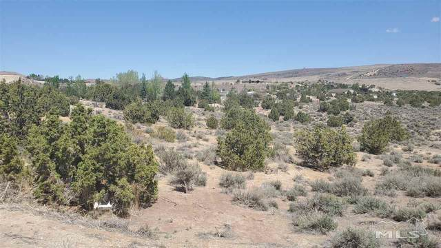0 Rio Seco Ln, Sparks, NV 89441 (MLS #210007395) :: The Mike Wood Team