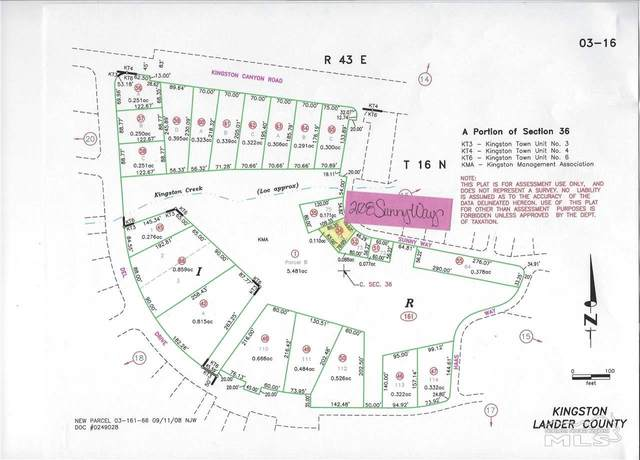 208 Sunny Way, Kingston, NV 89310 (MLS #210007478) :: Theresa Nelson Real Estate