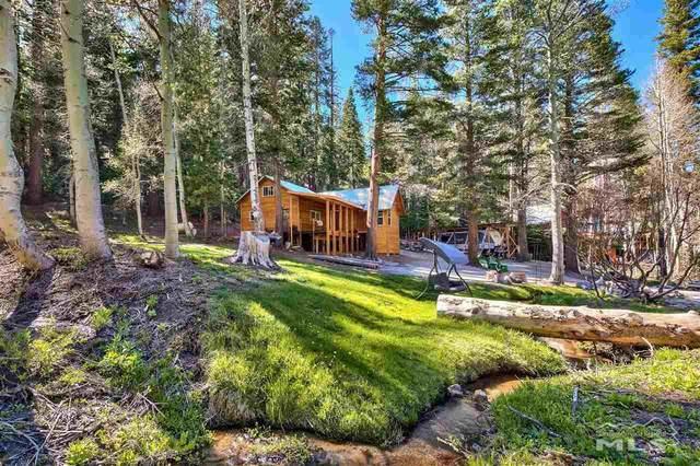 12065 Bums Gulch, Reno, NV 89511 (MLS #210007552) :: Theresa Nelson Real Estate