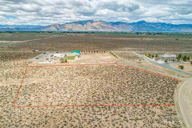 238 Chaparral Drive, Smith, NV 89430 (MLS #210007698) :: Theresa Nelson Real Estate