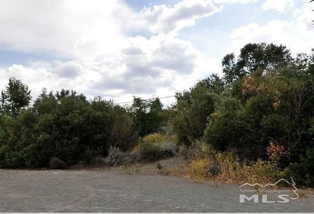 4305 Canyon Drive, Reno, NV 89519 (MLS #210008080) :: Morales Hall Group