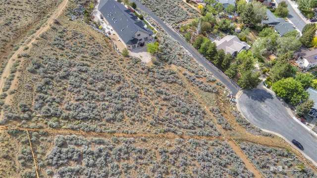 1147 Crain Circle, Carson City, NV 89703 (MLS #210008251) :: Chase International Real Estate