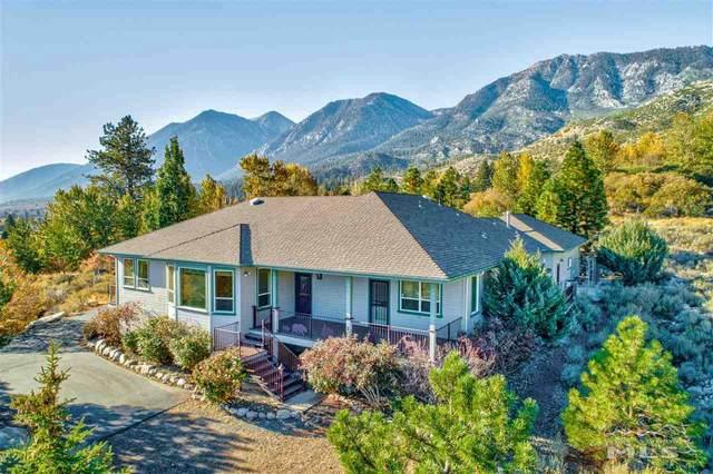 211 Mountain Reach, Gardnerville, NV 89460 (MLS #210008308) :: Chase International Real Estate