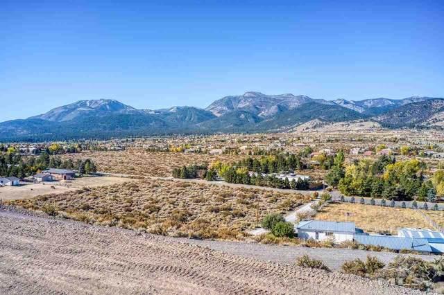 15350 Fawn Lane, Reno, NV 89511 (MLS #210008360) :: NVGemme Real Estate