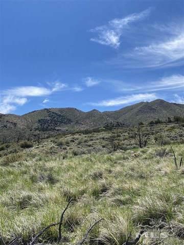 0 Deerlodge Rd, Reno, NV 89508 (MLS #210008376) :: Colley Goode Group- eXp Realty