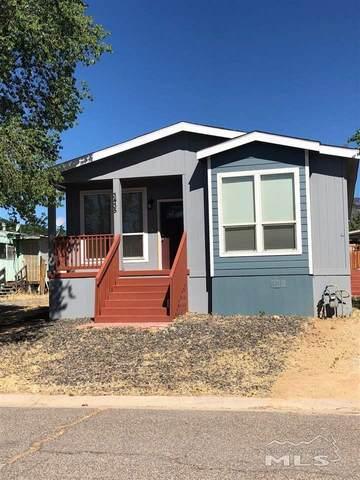 3435 Tourmaline Dr, Carson City, NV 89705 (MLS #210008442) :: Chase International Real Estate