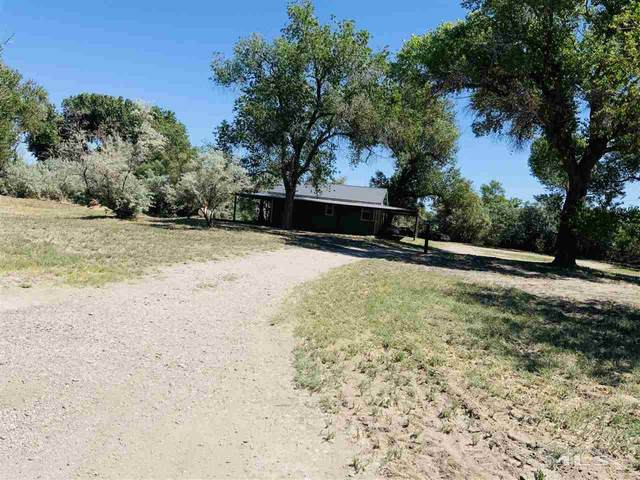 3830 Alcorn Rd, Fallon, NV 89406 (MLS #210008445) :: Chase International Real Estate