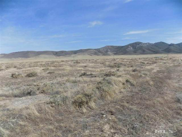 12 Kings View Rd, Imlay, NV 89418 (MLS #210008735) :: The Mike Wood Team