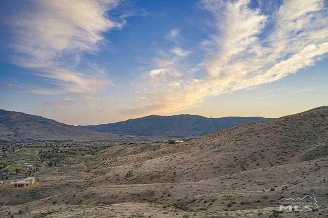 0 Painted River Trail, Reno, NV 89523 (MLS #210008959) :: Theresa Nelson Real Estate