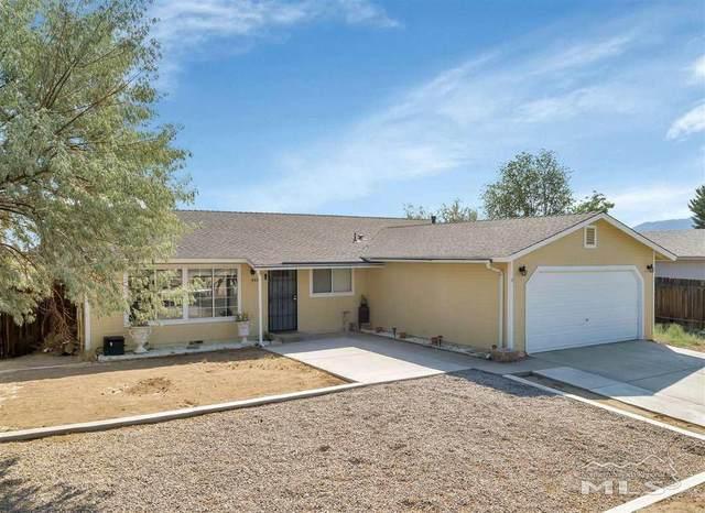 302 Occidental Drive, Dayton, NV 89403 (MLS #210009584) :: Vaulet Group Real Estate
