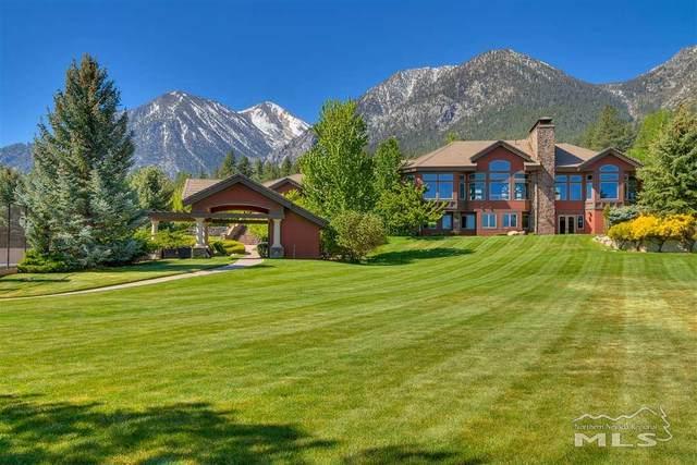 263 Sierra Country Circle, Gardnerville, NV 89460 (MLS #210009623) :: NVGemme Real Estate