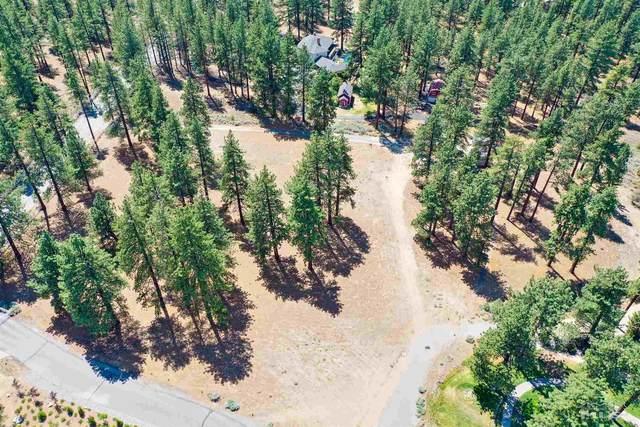 1 Pine Mesa, Washoe Valley, NV 89704 (MLS #210009964) :: Chase International Real Estate