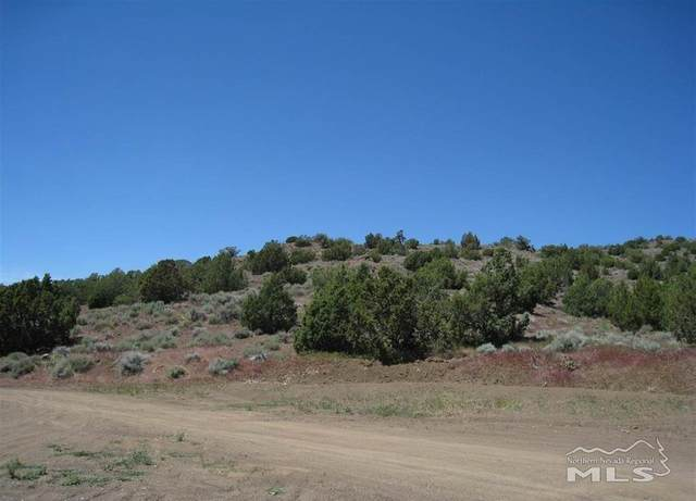 0 Left Hand Canyon, Reno, NV 89510 (MLS #210010076) :: NVGemme Real Estate