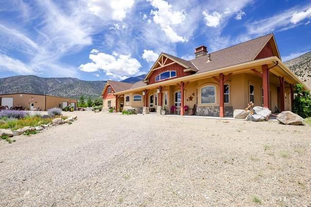 257 Artesia Rd., Wellington, NV 89444 (MLS #210010082) :: NVGemme Real Estate