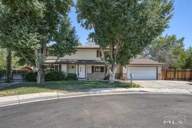 970 Lescon Cir, Reno, NV 89509 (MLS #210010124) :: Theresa Nelson Real Estate