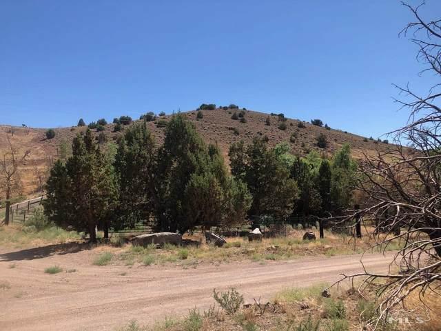 1955 Piute Creek Rd, Reno, NV 89510 (MLS #210010414) :: Chase International Real Estate
