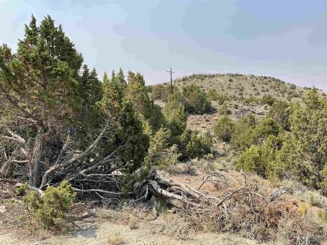 3055 Piute Creek, Reno, NV 89510 (MLS #210010457) :: Chase International Real Estate