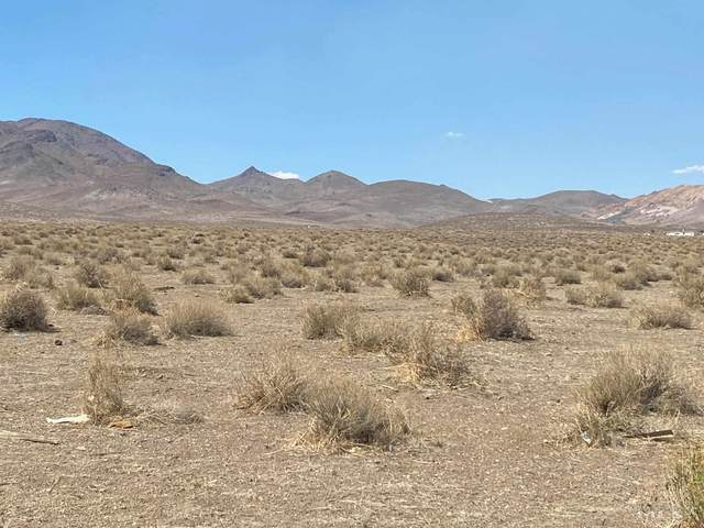 9425 Quarter Horse Lane, Stagecoach, NV 89429 (MLS #210010625) :: The Mike Wood Team