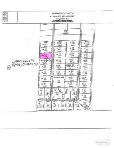 10560 Spur St., Winnemucca, NV 89445 (MLS #210010665) :: Vaulet Group Real Estate