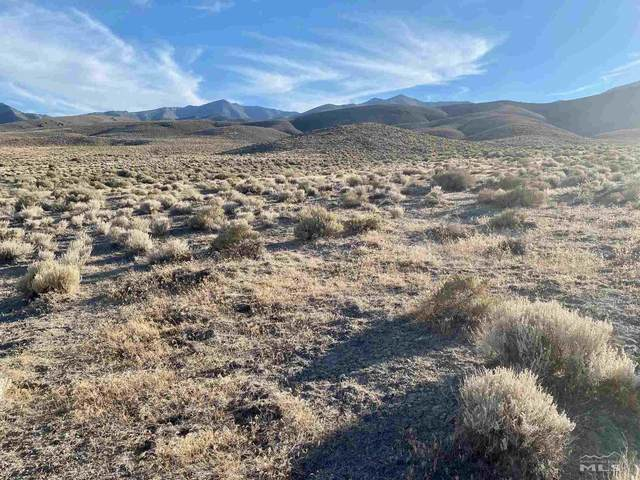 01526001 Near American Canyon Rd, Unionville, NV 89418 (MLS #210010696) :: Colley Goode Group- eXp Realty