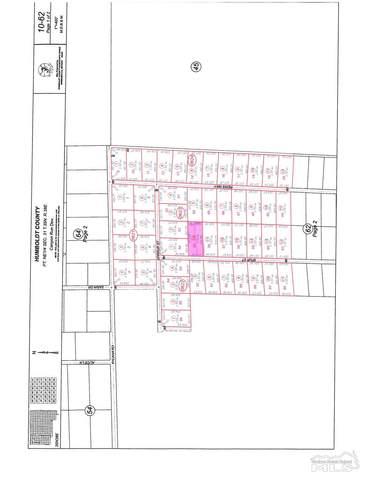 10205 Spur St., Winnemucca, NV 89445 (MLS #210010712) :: Vaulet Group Real Estate