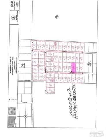 10365 Spur St., Winnemucca, NV 89445 (MLS #210010739) :: Chase International Real Estate