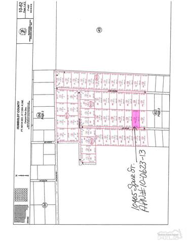 10405 Spur St., Winnemucca, NV 89445 (MLS #210010743) :: Chase International Real Estate