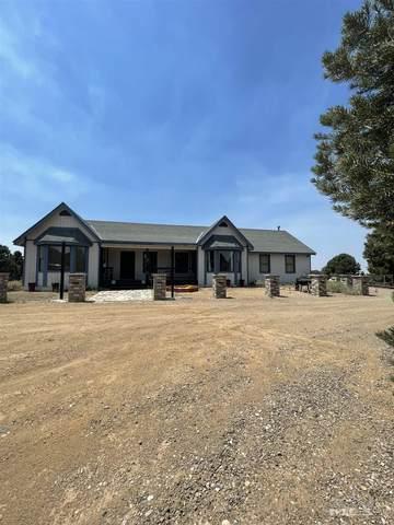 4970 Dry Gulch Road, Reno, NV 89521 (MLS #210010816) :: NVGemme Real Estate