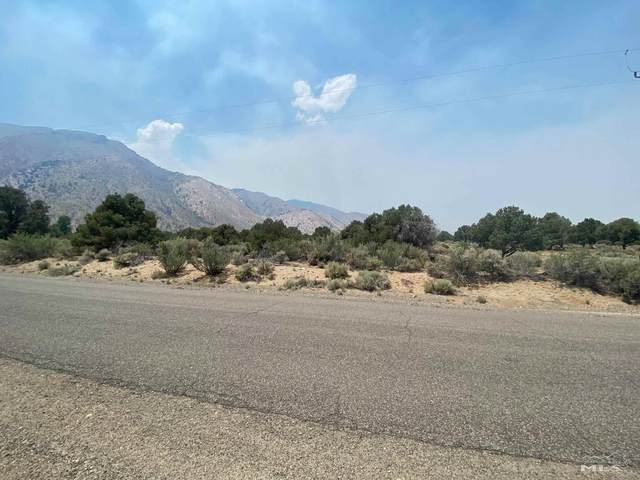 453 Upper Colony Road, Smith, NV 89430 (MLS #210010886) :: NVGemme Real Estate