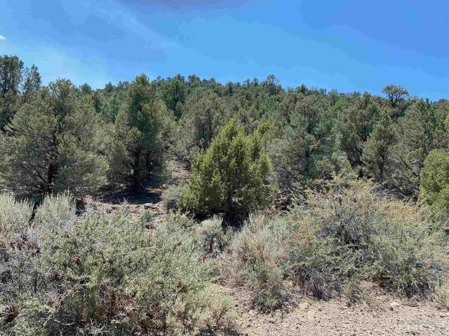 2370 Wildrose, Reno, NV 89521 (MLS #210010947) :: NVGemme Real Estate