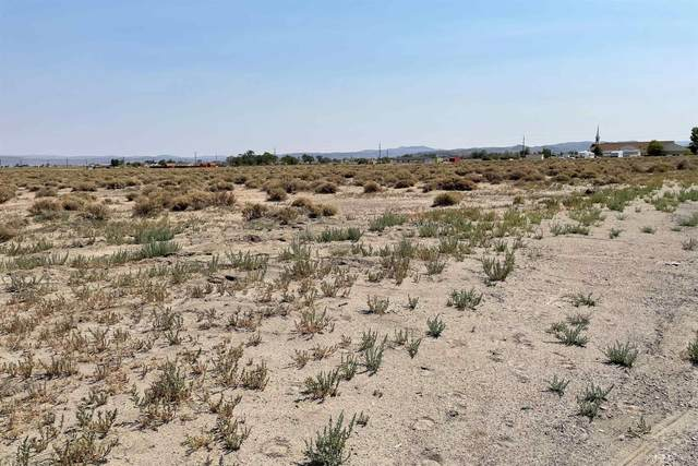 5460 Highway 95A South, Silver Springs, NV 89429 (MLS #210011333) :: Vaulet Group Real Estate